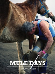 Mule Days Movie Poster Design